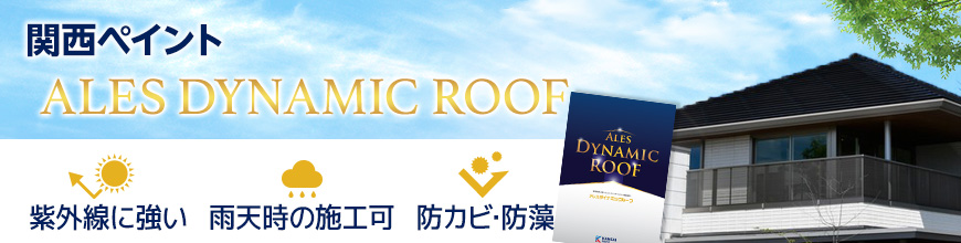 ALES DYNAMIC ROOF