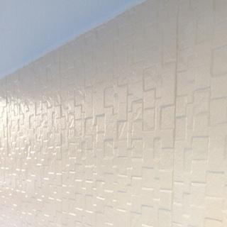 早めの塗装で家の寿命を延ばす(神奈川県海老名市)