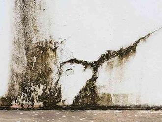 雨漏りの修理&対策方法|雨漏りのサインは屋根だけではなく外壁も!
