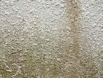 外壁の吹き付け塗装はこんなに奥深い!特徴やお手入れ法など丸ごと解明