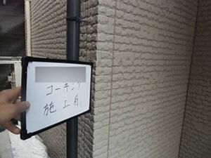 「サイディング外壁を淡いグリーンに塗り替え!軽やかで明るい住宅に(神奈川県藤沢市)」のBefore写真
